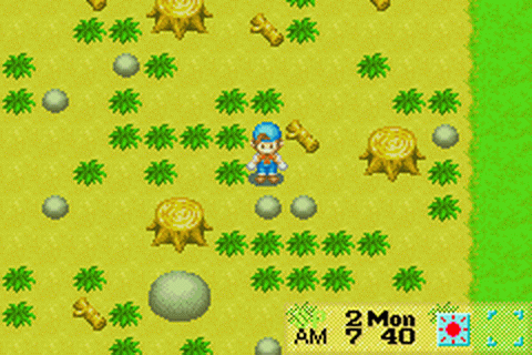 Gameboy Advance classic Harvest Moon - character in a field full of weeds, logs, and stones.