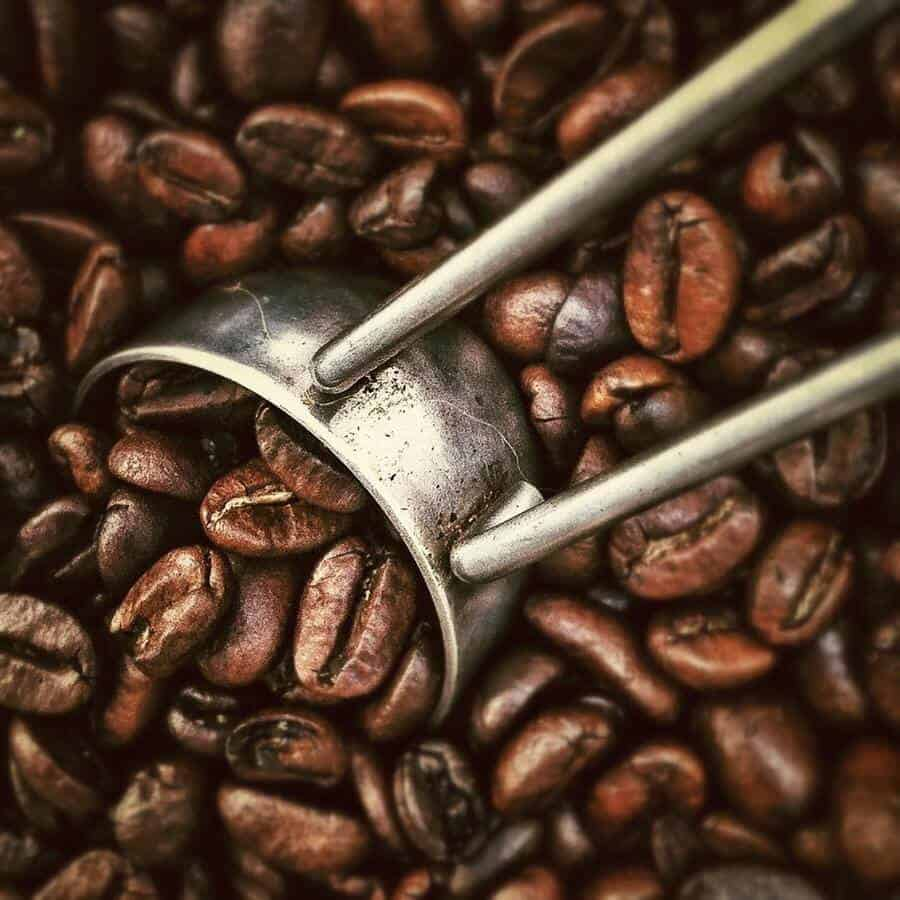 Coffee beans and a scooper.