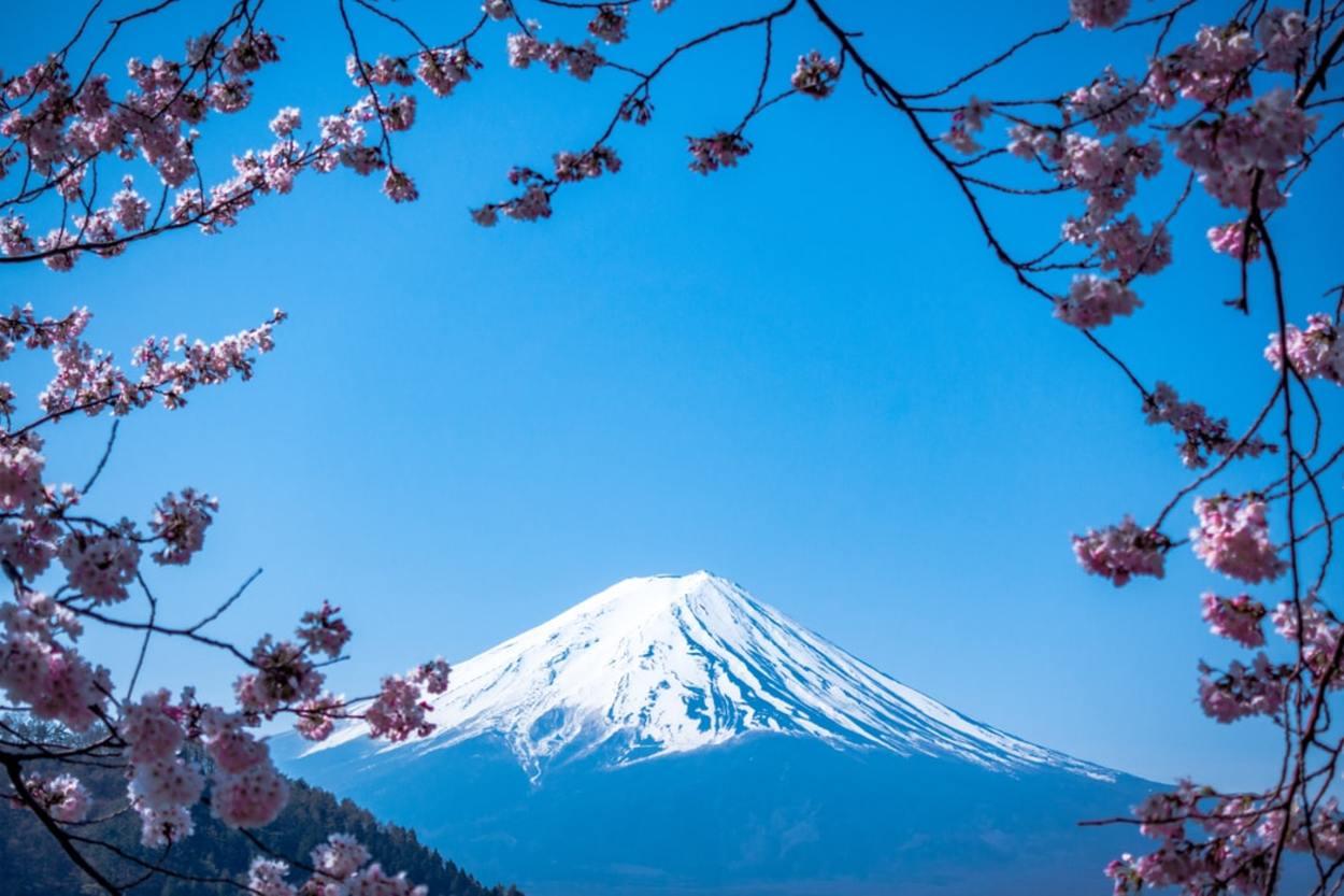 Best Energy Drinks In Japan (For More Energy)