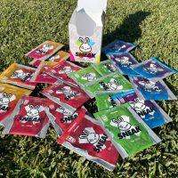 Sneak energy packets